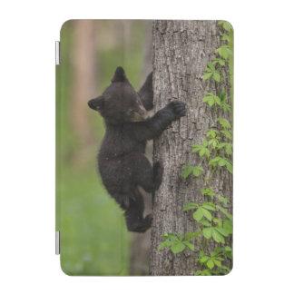 Protection iPad Mini Arbre d'escalade de CUB d'ours noir