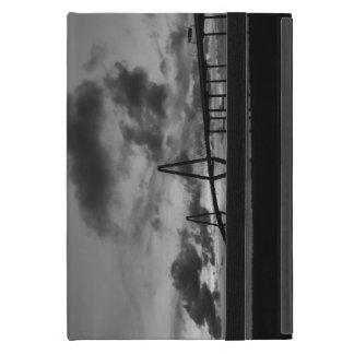 Protection iPad Mini Gamme de gris d'or d'Arthur Ravenel Pano