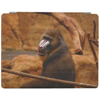 Protection iPad Pavian/babouin