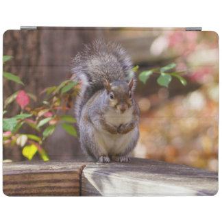 Protection iPad Prier l'écureuil