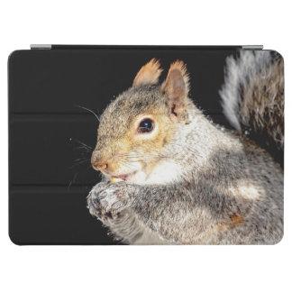 Protection iPad Pro Écureuil mangeant un écrou