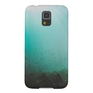 Protections Galaxy S5 mer bleue sous-marine