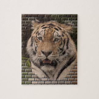 Puzzle Animal sur des briques, TIGRE