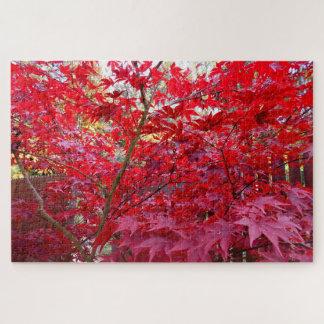Puzzle Arbre d'érable rouge d'automne