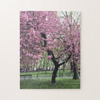 Puzzle Assez dans l'arbre rose NYC New York de fleurs de