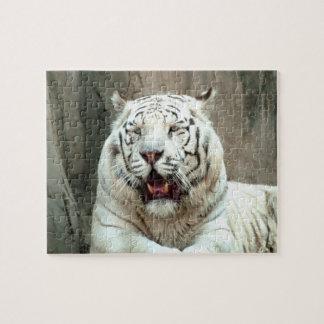 Puzzle Beau grand tigre blanc vous regardant
