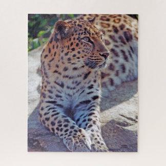 Puzzle Beau léopard -