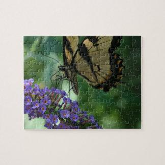 Puzzle Beau papillon de machaon de tigre sur la fleur
