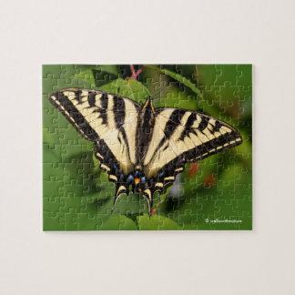Puzzle Beau papillon occidental de machaon de tigre