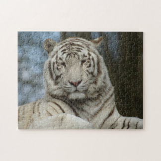 Puzzle blanc de tigre