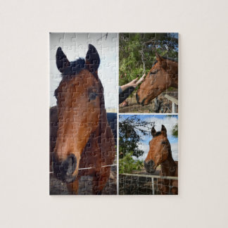 Puzzle Brown_Horses_Photo_Collage_Jigsaw_Puzzle.