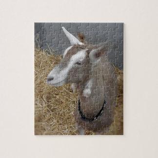 Puzzle Casse-tête de chèvre