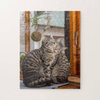 Puzzle Casse-tête de deux chats ensemble
