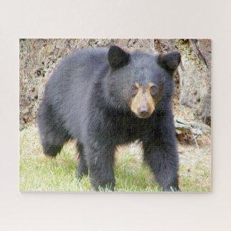 Puzzle Casse-tête de faune d'ours noir