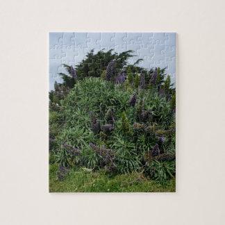 Puzzle Casse-tête de lilas de la Californie