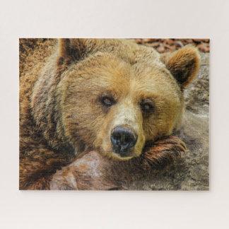 Puzzle Casse-tête d'ours gris de Brown