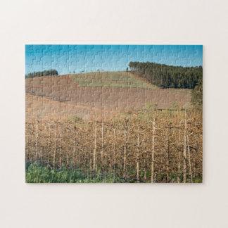 Puzzle Casse-tête d'un paysage agricole