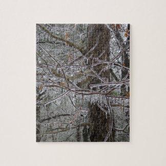 Puzzle Casse-tête gelée de forêt