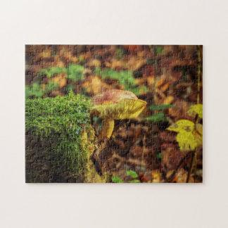 Puzzle Champignon sur un Treestump