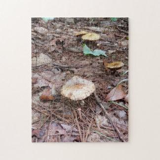 Puzzle Champignons bronzages de couleur en montagnes N.C.