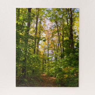 Puzzle Chemin paisible dans la forêt
