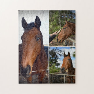 Puzzle Chevaux de Brown dans un collage de photo,