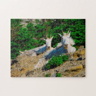 Puzzle Chèvres de montagne Montana