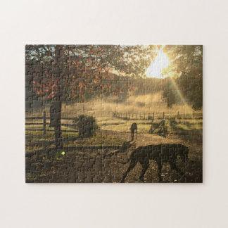 Puzzle Chien et soleil