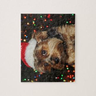 Puzzle Chien mignon de Yorkshire Terrier avec le