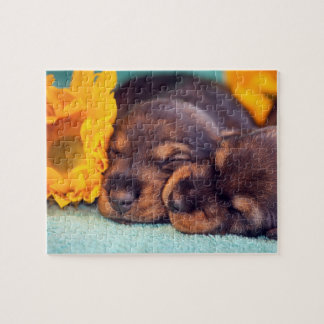 Puzzle Chiots adorables de sommeil Doxen