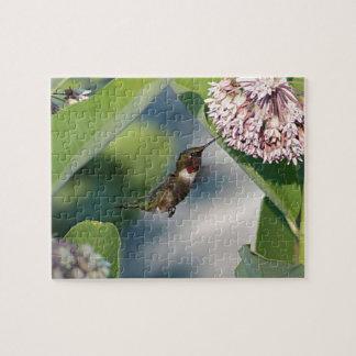 Puzzle colibri Rubis-throated