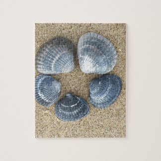Puzzle Coquilles bleues