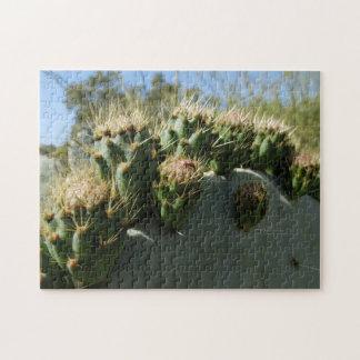 Puzzle de cactus