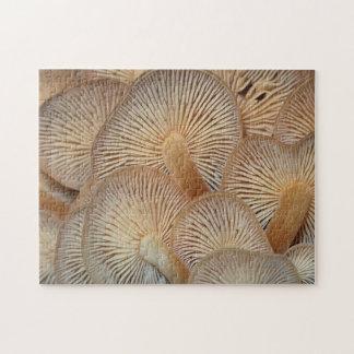 Puzzle de champignons d'ouïe de Mycena
