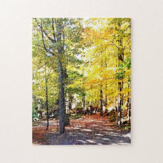Puzzle de chemin d'automne coloré par haut niveau