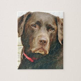 Puzzle de chien