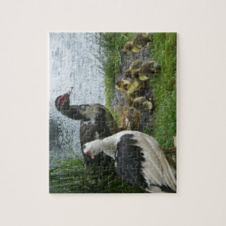 Puzzle de famille de canard de Muscovy