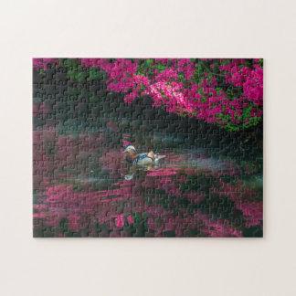 Puzzle de photo de canard de mandarine