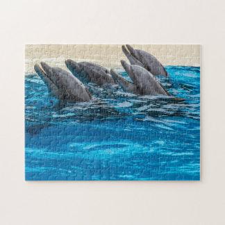 Puzzle de photo de dauphins