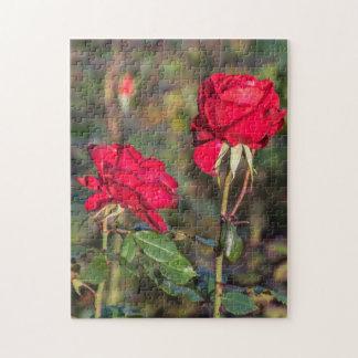 Puzzle de photo de deux roses rouges