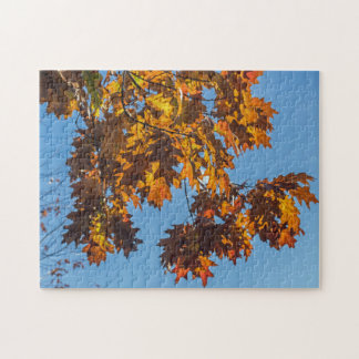 Puzzle de photo de feuille d'automne