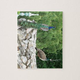 Puzzle de photo de jardin d'oiseaux de paons avec
