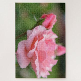 Puzzle de rose de rose