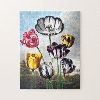 Puzzle de tulipes