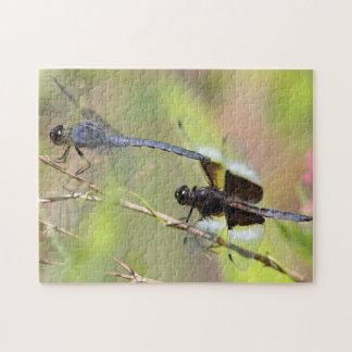 Puzzle Deux libellules