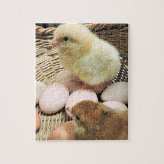 Puzzle Deux poulets de bébé dans un panier des oeufs