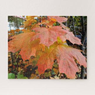Puzzle Feuille d'automne