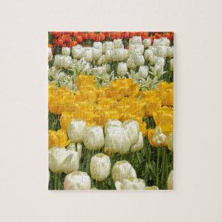 Puzzle Fleurs en abondance