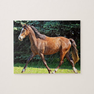 Puzzle Fonctionnement de cheval de Brown