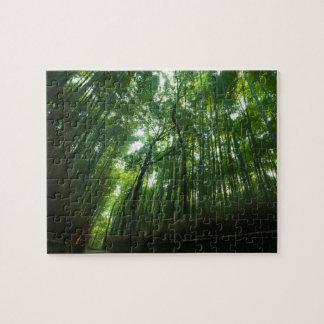 Puzzle Forêt en bambou dans Arashiyama, Sagano, Kyoto,
